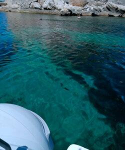 Nautica Bonaventura   favignana   sosta in gommone